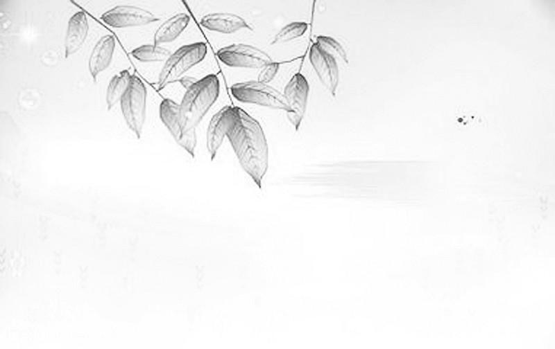珍爱环境 保护地球简笔画