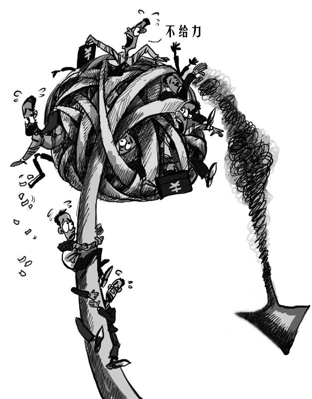 花螺身体结构示意图